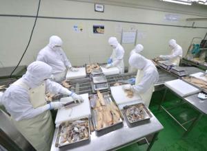 食品製造部門1